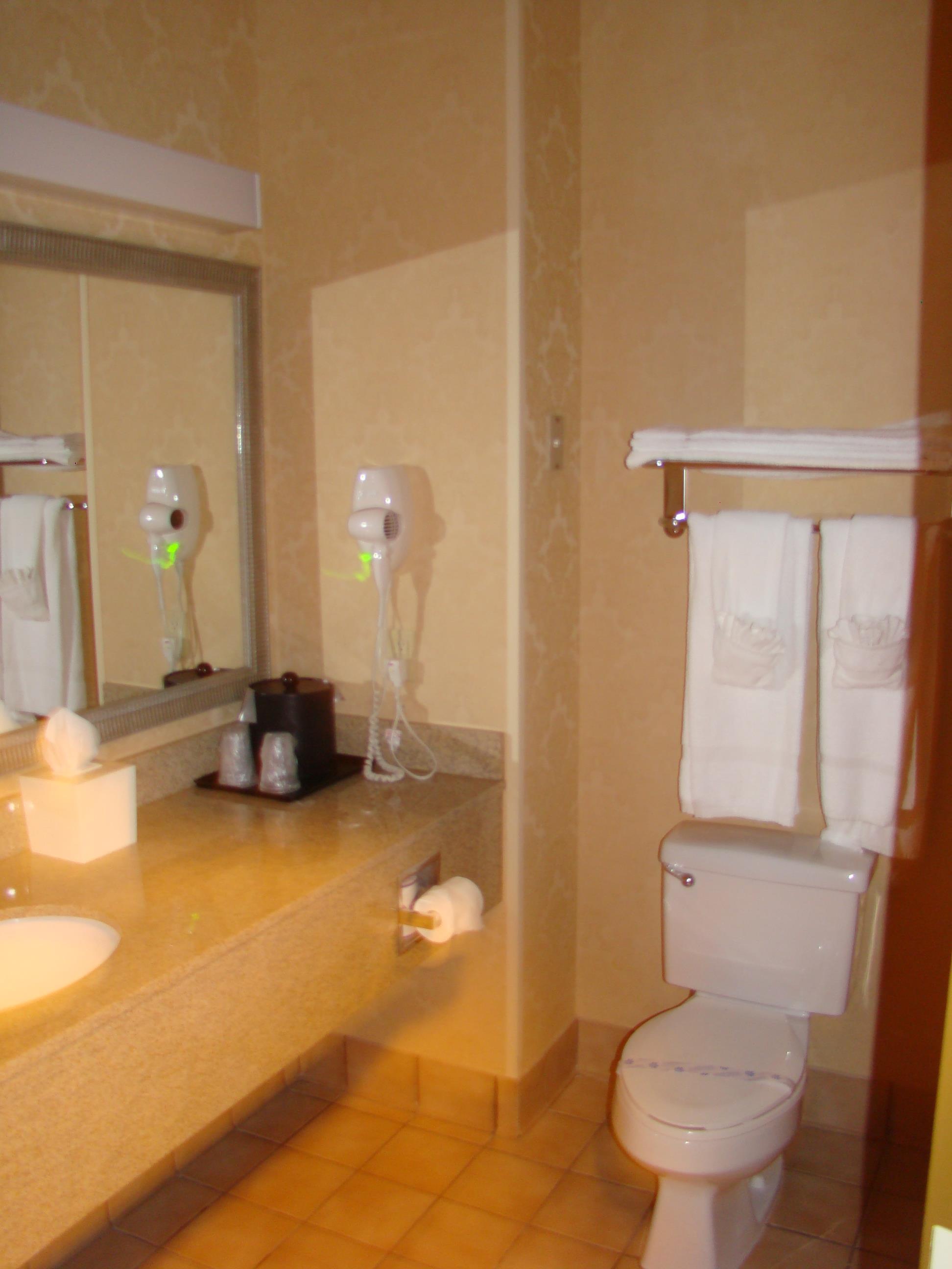 Best Western Plus Denton Inn & Suites image 47