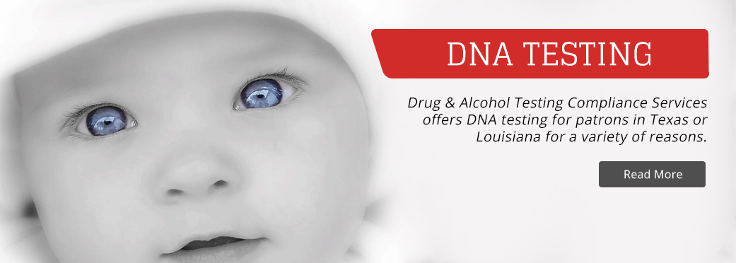 Drug and Alcohol Testing Compliance Services image 2