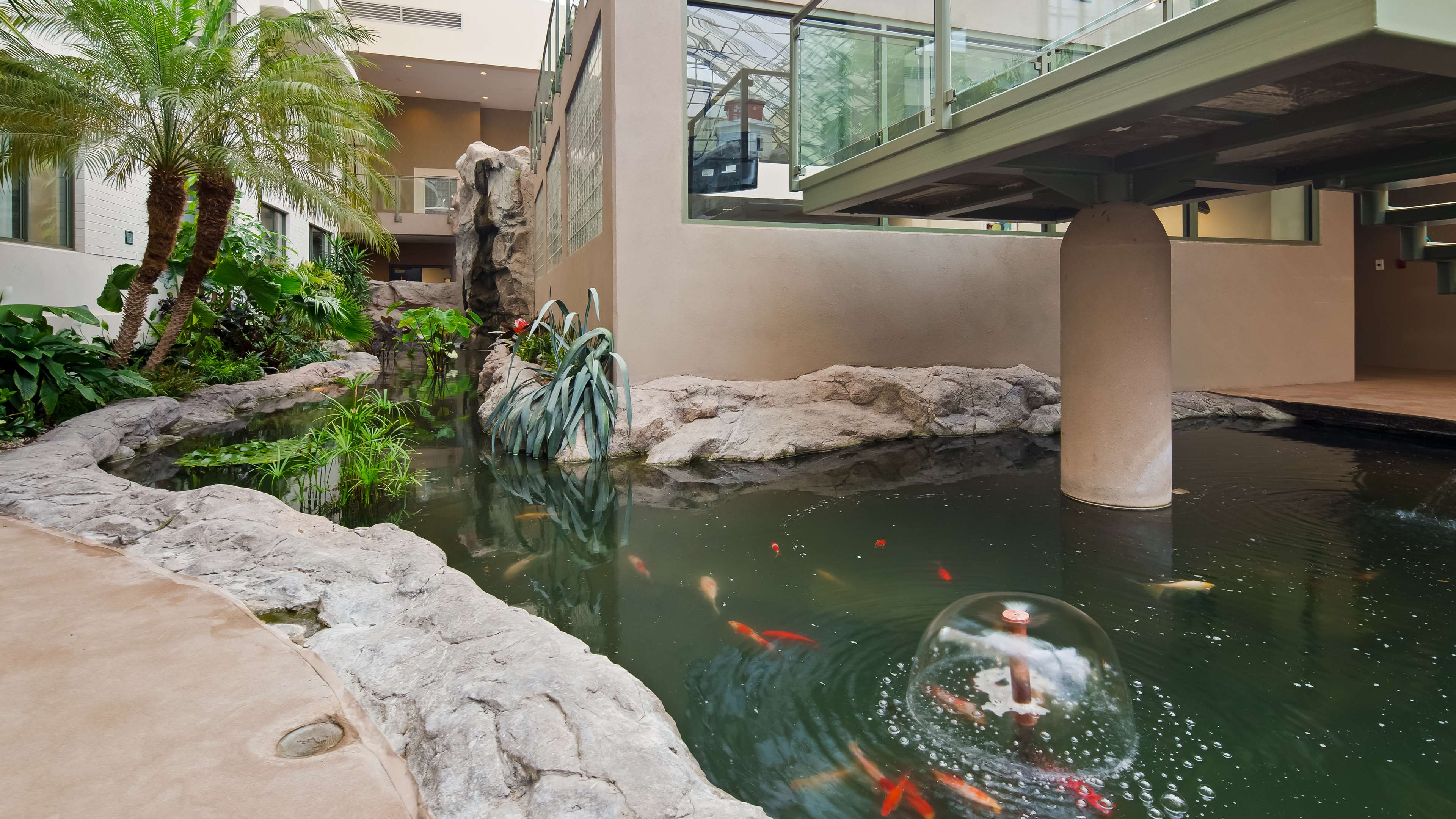 Best western plus lamplighter inn conference centre for Koi pool opening times