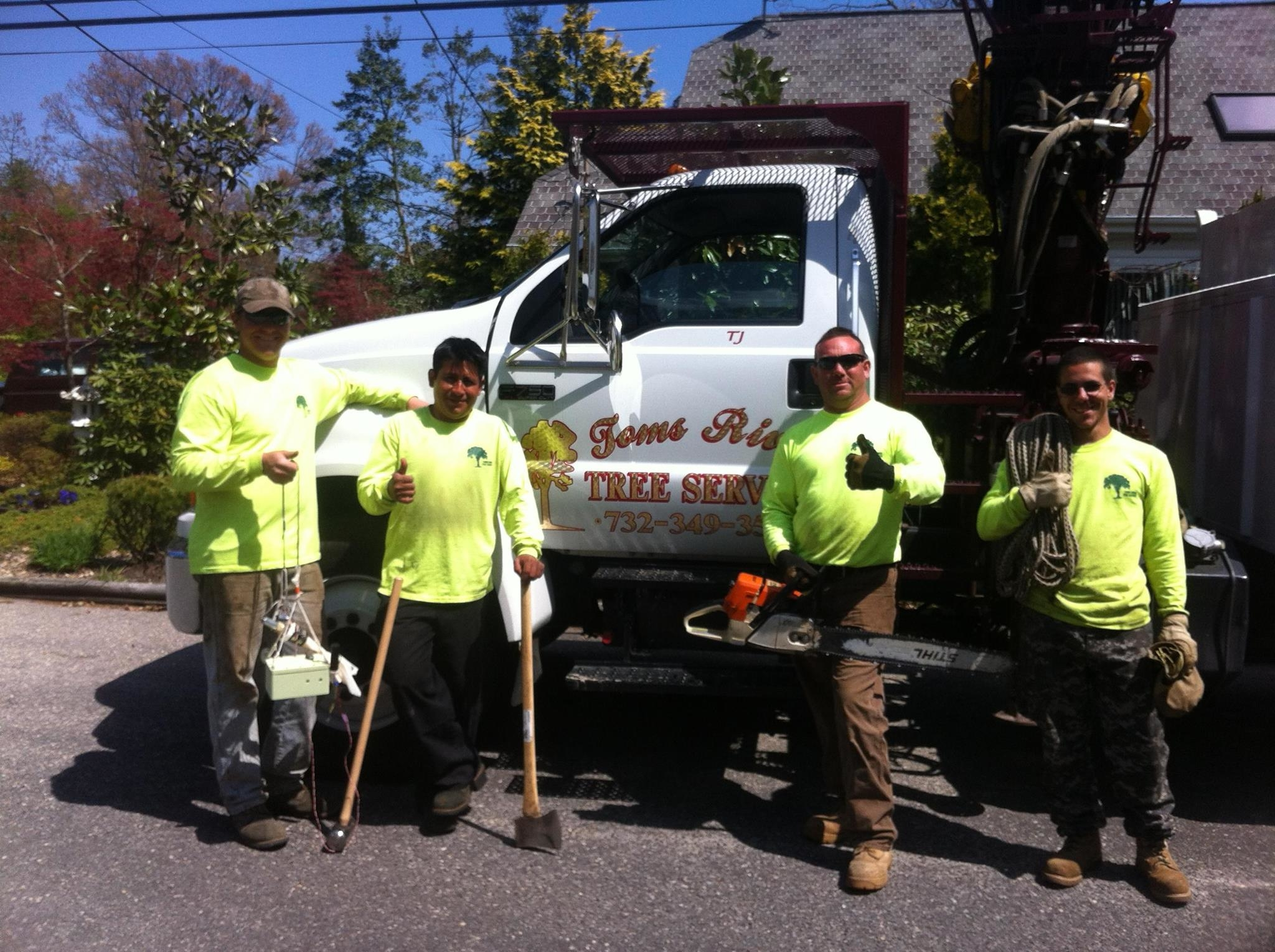 Toms River Tree Service image 3