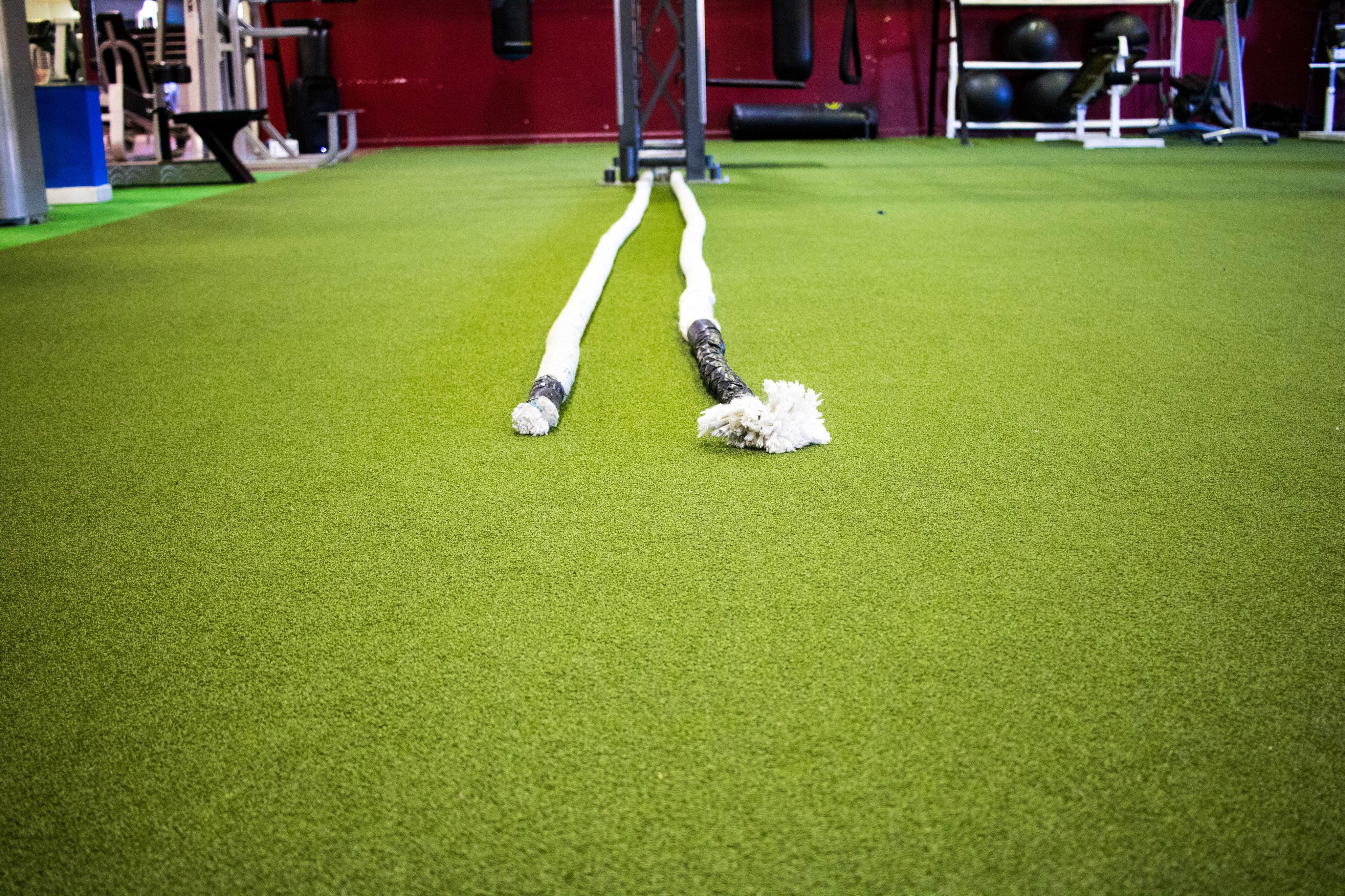 Plex Fitness image 17