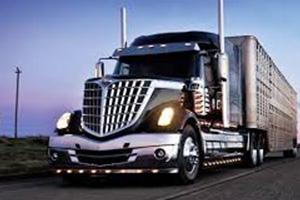 LKQ Heavy Truck - Tampa image 2