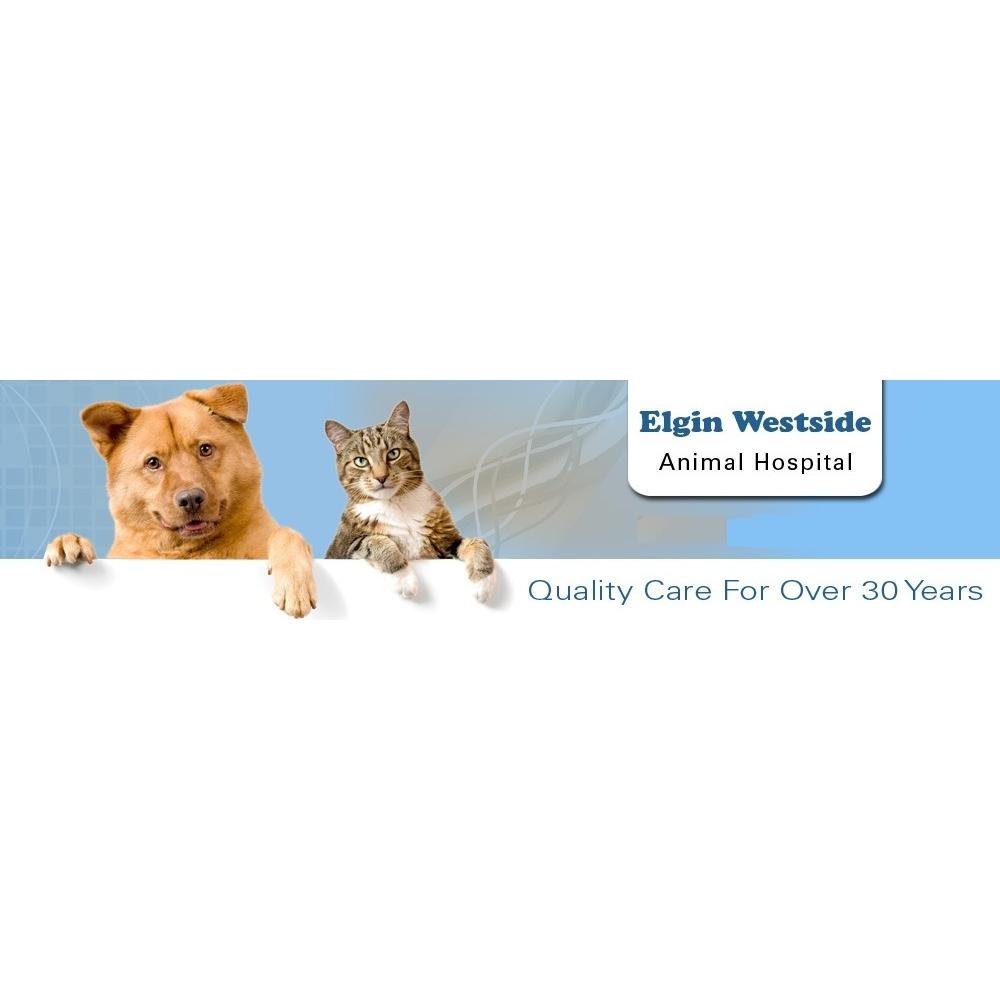 Elgin Westside Animal Hospital