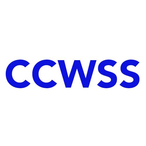 Casey's Chimney & Wood Stove Service