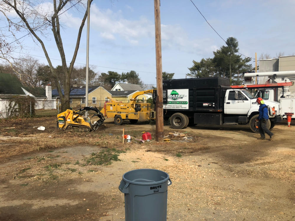 Prate's Tree Services image 3