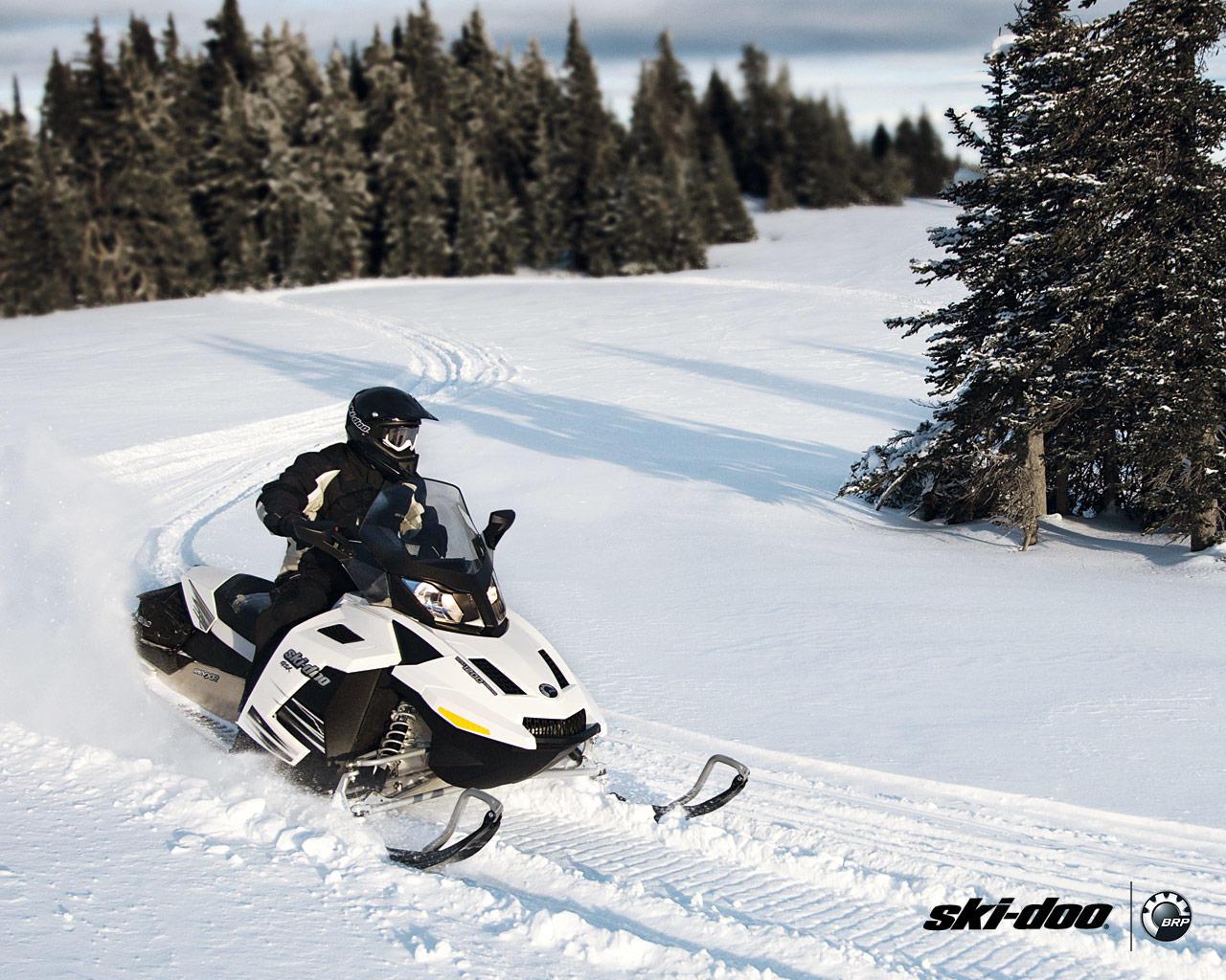 P-Dog Snowmobile Rental and Repair, Inc. image 4