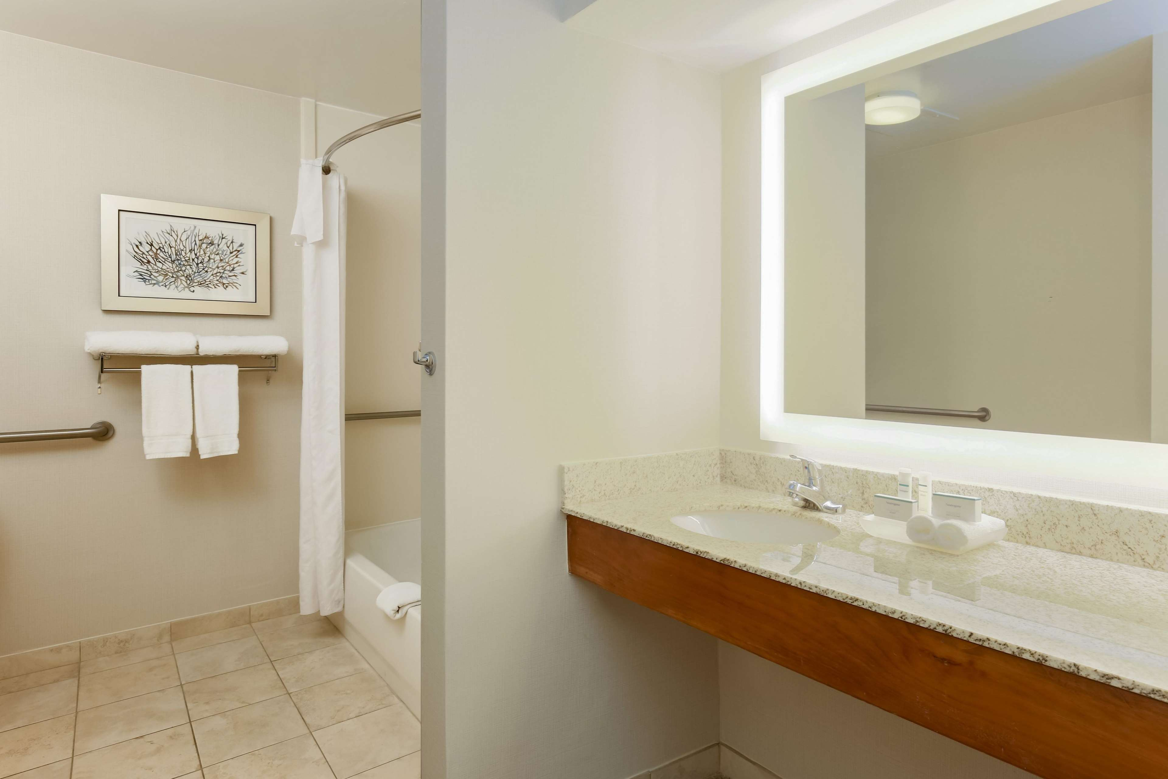 Homewood Suites by Hilton St. Petersburg Clearwater image 29