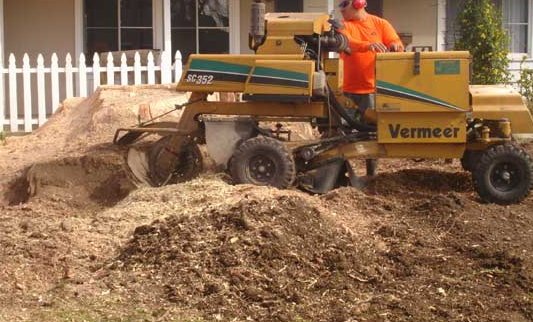 A-1 Stump Grinding image 1