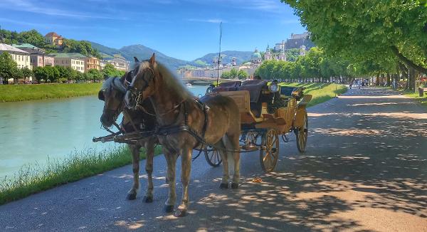 Fiaker Salzburg - Winter Franz jun