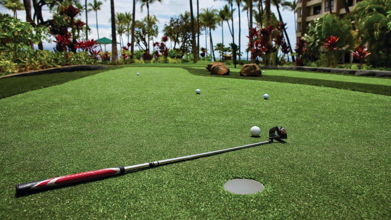 Marriott's Maui Ocean Club  - Lahaina & Napili Towers image 27