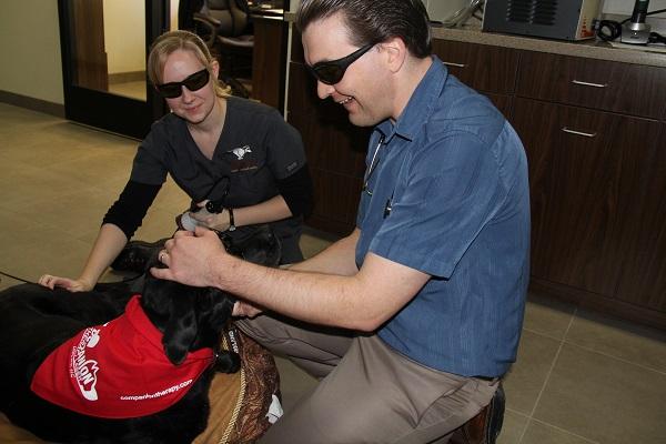 Raintree Pet Resort + Medical Center image 7
