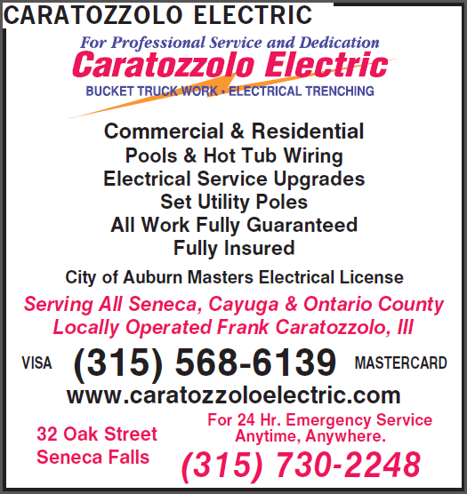 Caratozzolo Electric image 1