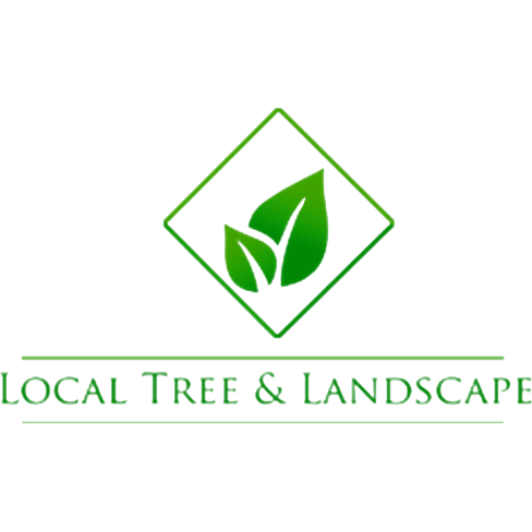 Local tree landscape grandview mo company profile for Local landscapers
