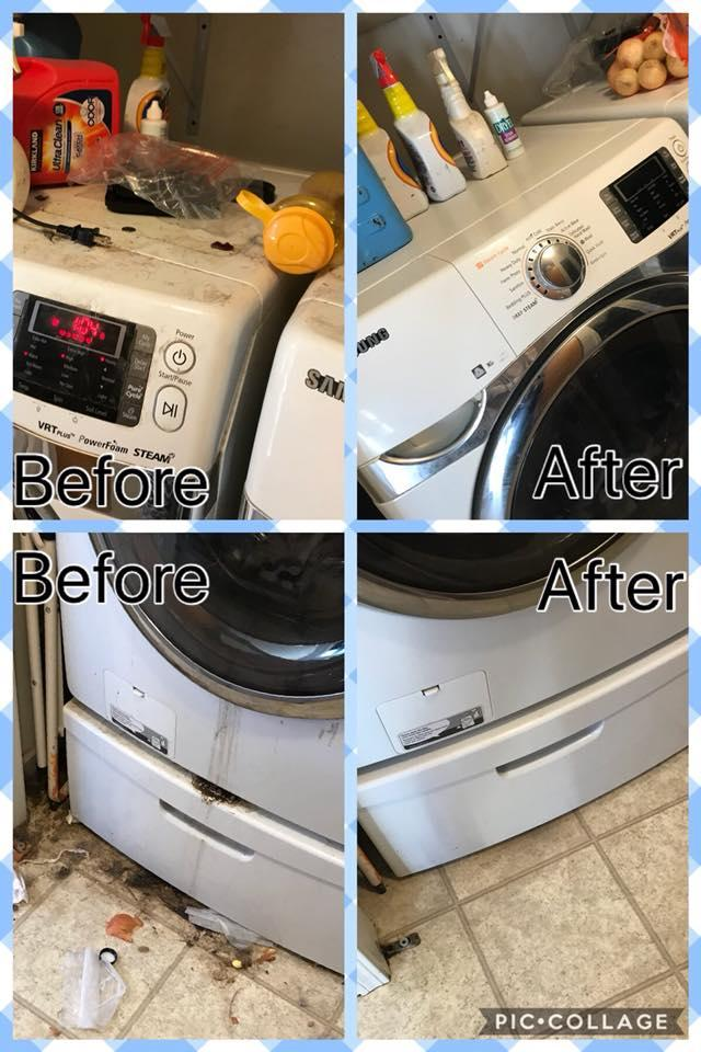 Quality Clean Professional Services image 1