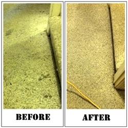 Pristine Carpet Cleaning image 12