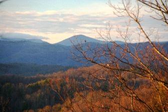 Mountain Property Brokerage image 3