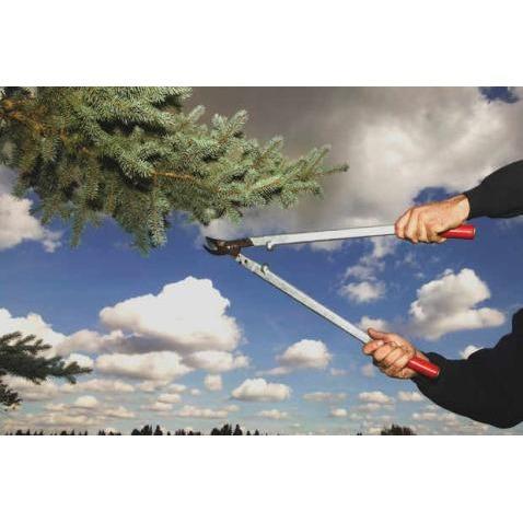 J & J Professional Tree Service