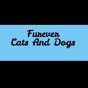 Furever Cats And Dogs