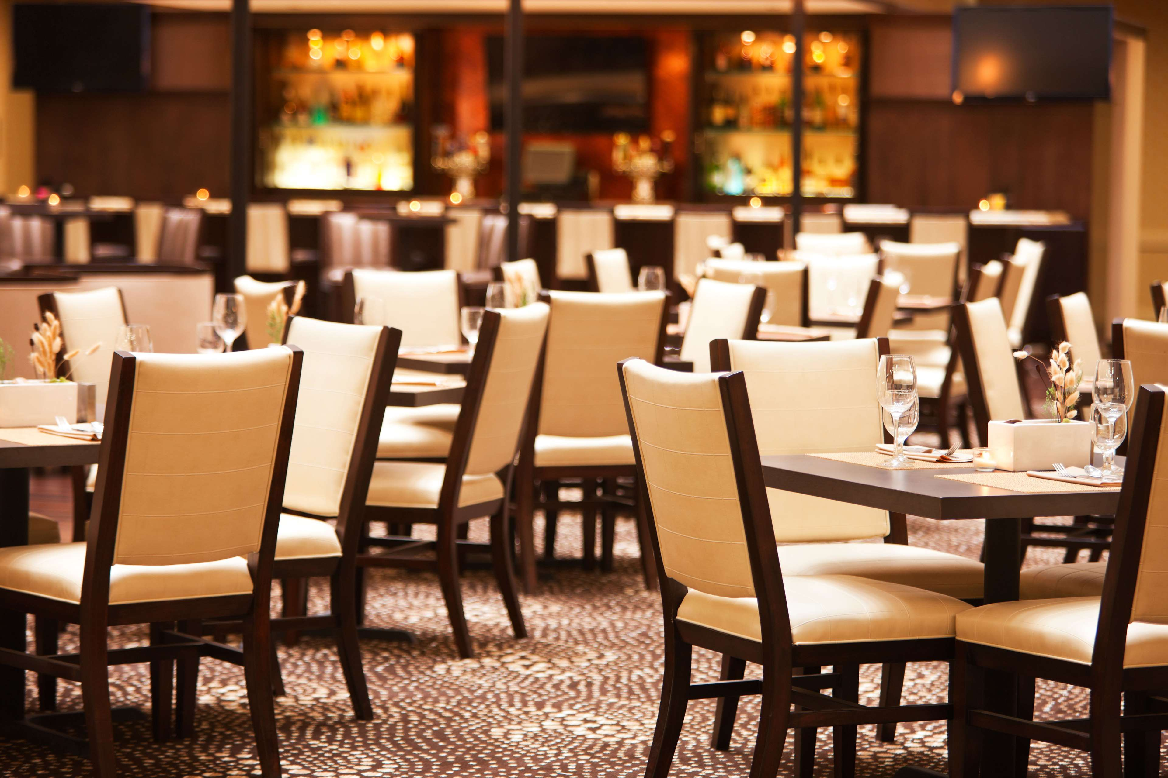 Sheraton Suites Chicago O'Hare image 13