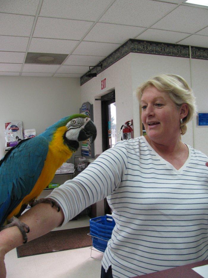 VCA Highlands Animal Hospital image 3