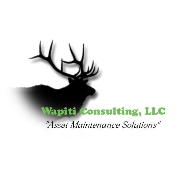 Wapiti Consulting L L C