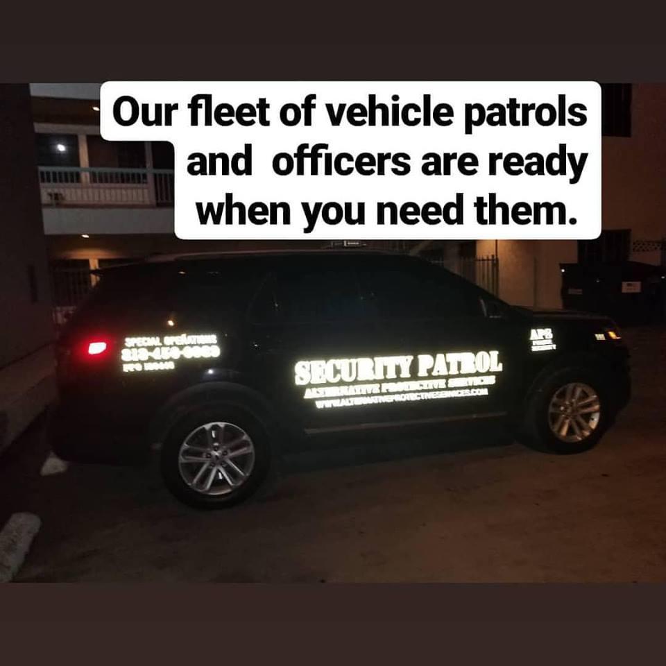 Alternative Protective Services Inc image 5