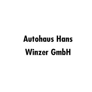 Logo von Winzer GmbH Lkw-Betrieb