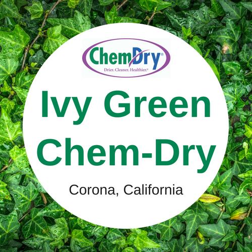 Ivy Green Chem-Dry