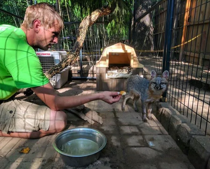3 Palms Zoo and Education Center image 3