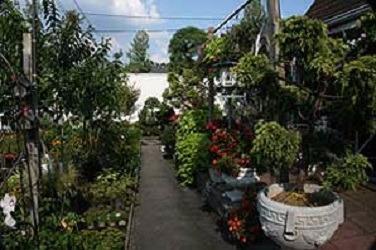 Tony Distefano Landscape Garden Center image 2