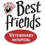 Best Friends Veterinary Hospital image 1