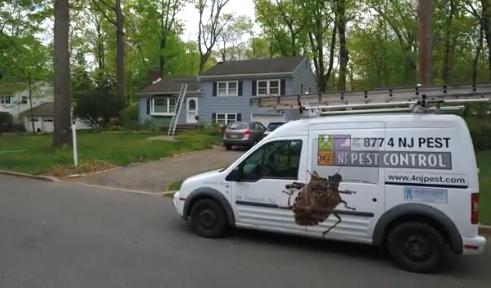 NJ Pest Control image 1