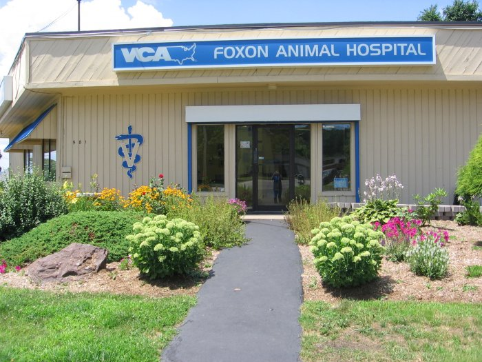 VCA Foxon Animal Hospital in East Haven, CT 06513 | Citysearch