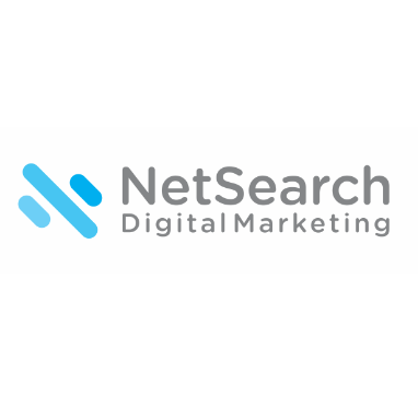 Netsearch digital marketing in richmond va 23226 citysearch for Marketing agency richmond