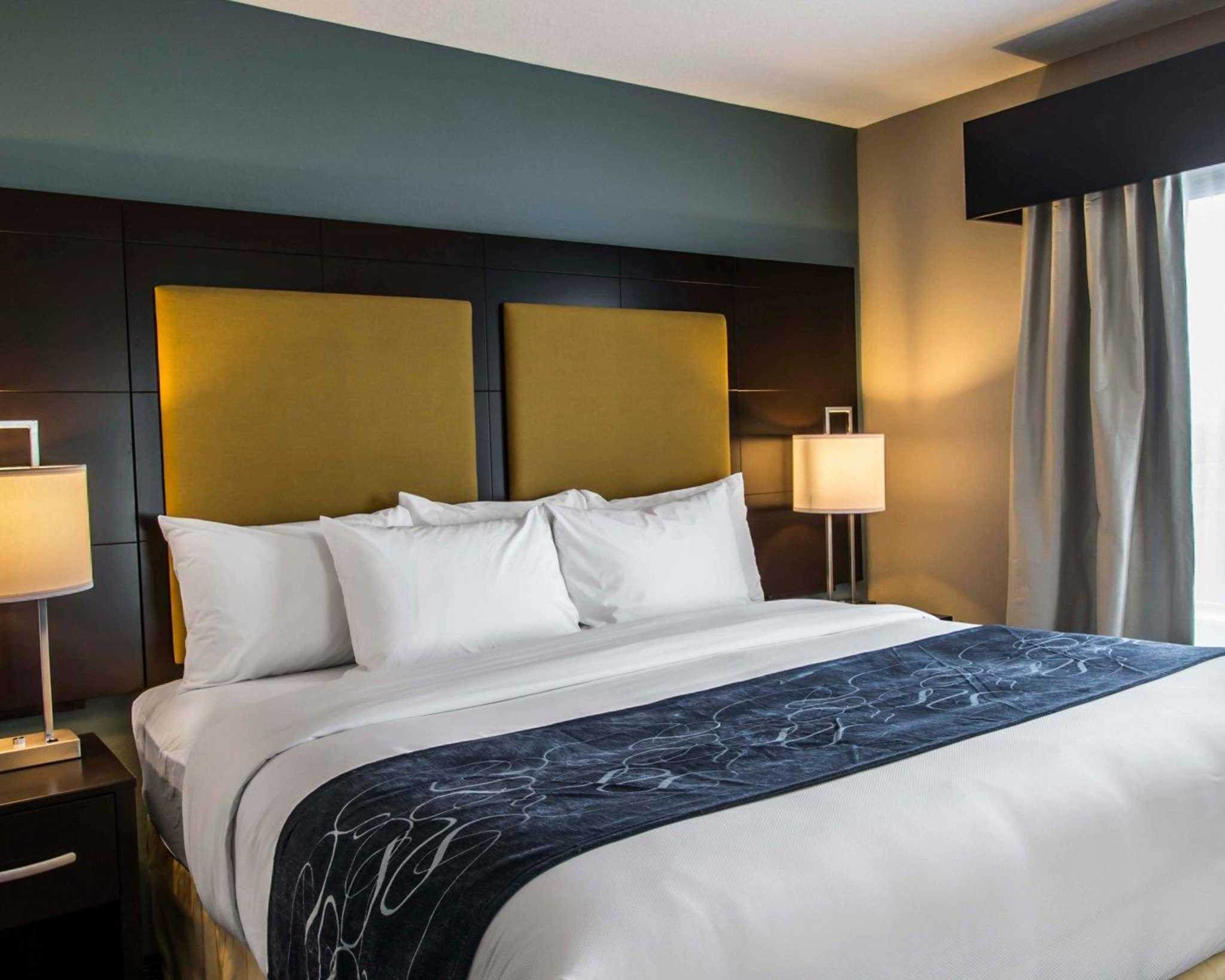 Comfort Suites Fort Lauderdale Airport South & Cruise Port image 12