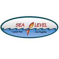 Sea Level Inc