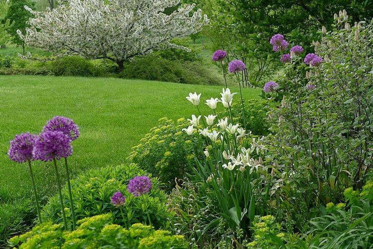 Superior Sod & Garden Supplies image 6