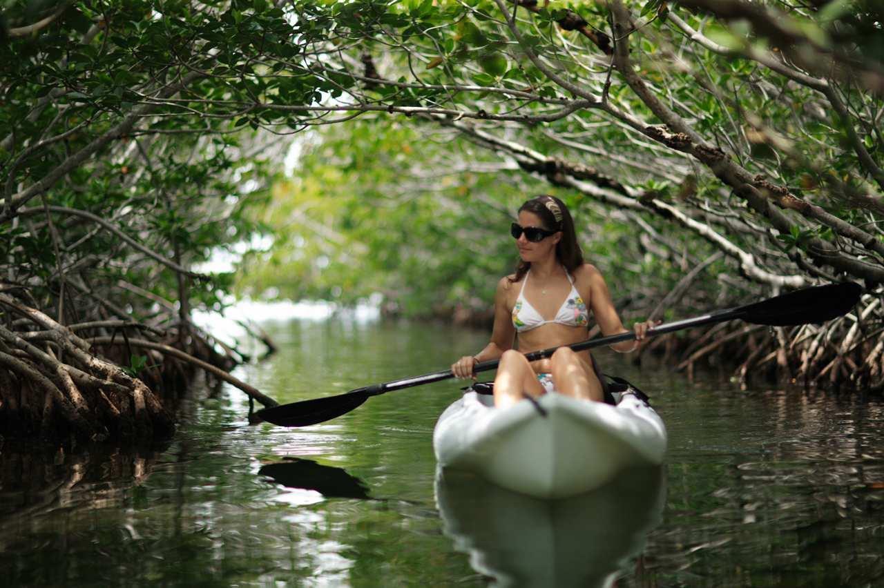 Hilton Key Largo Resort image 10