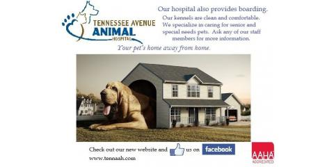Tennessee Avenue Animal Hospital image 0