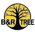B&R Tree Care