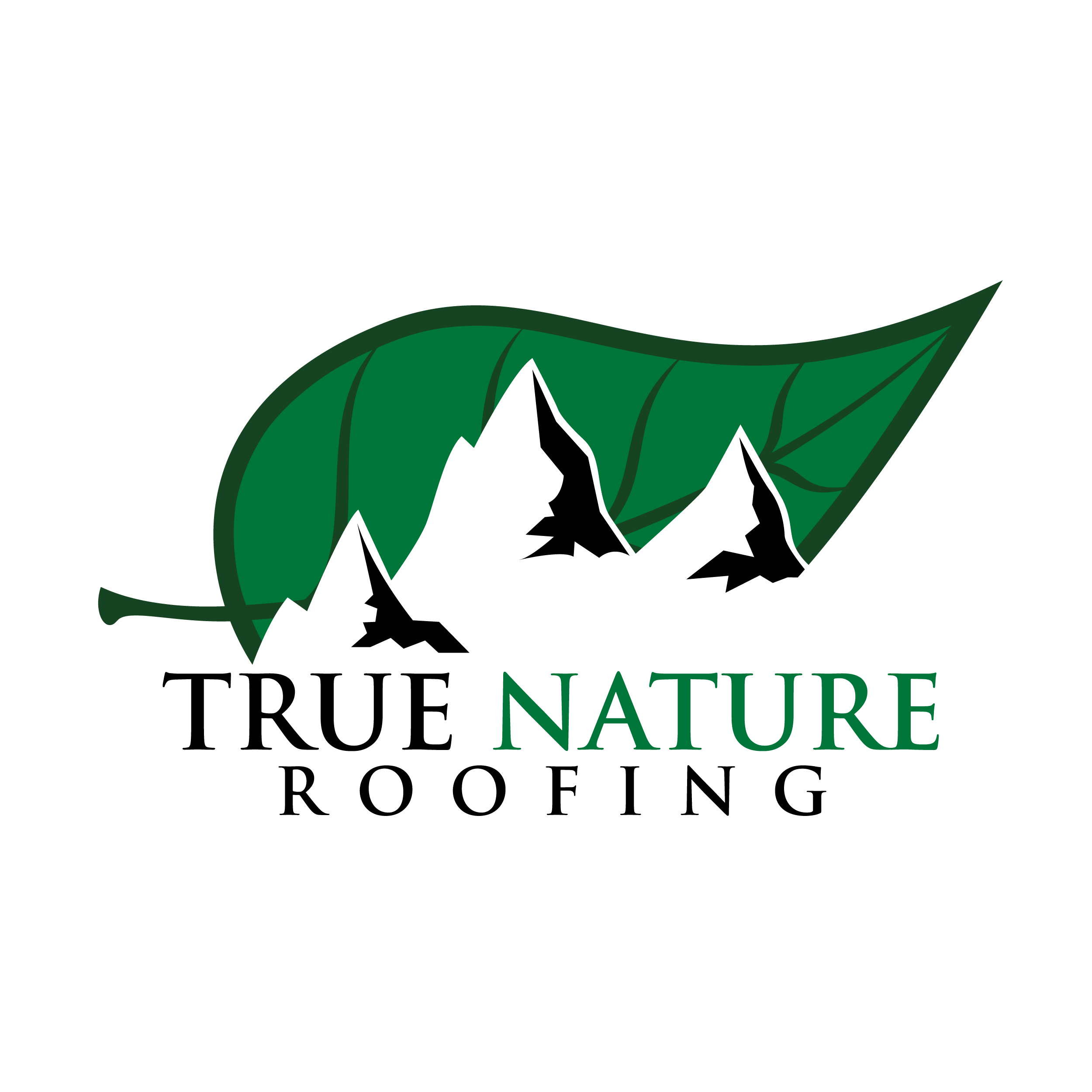 True Nature Roofing Coupons Near Me In Colorado Springs