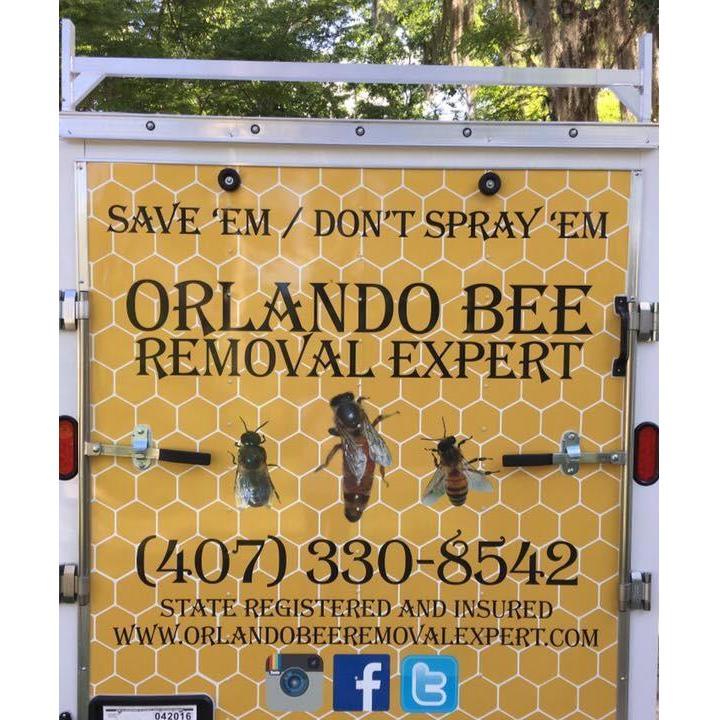 Orlando Bee Removal Expert LLC - Oviedo, FL 32765 - (407)330-8542   ShowMeLocal.com