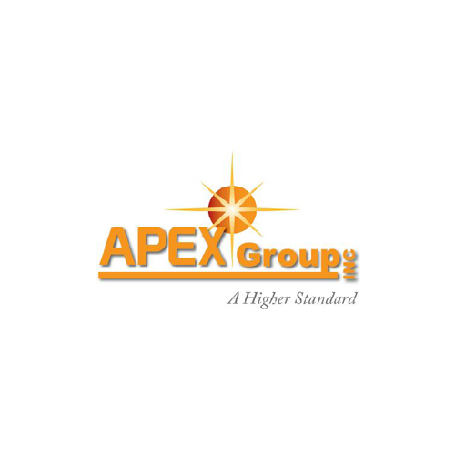 APEX GROUP INC