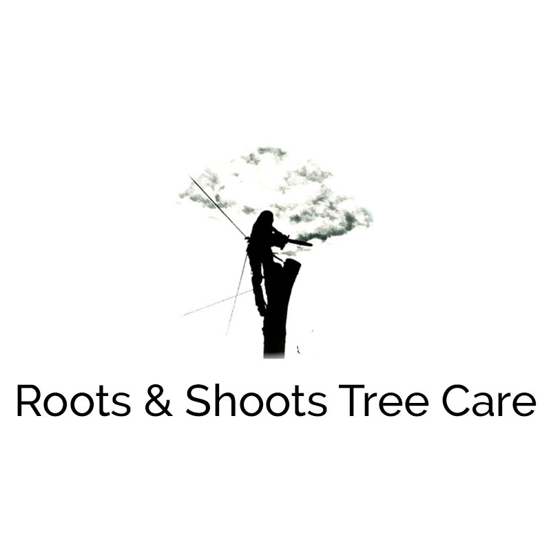 Roots & Shoots Tree Care