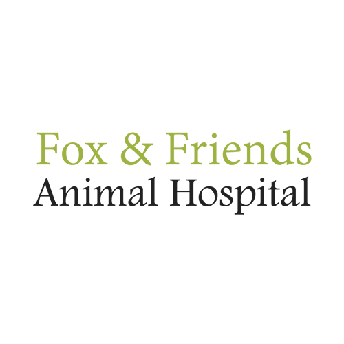 Fox and Friends Animal Hospital in Sun City Center, FL, photo #1