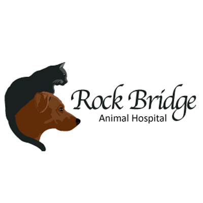 Rock Bridge Animal Hospital image 0