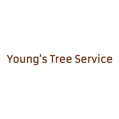 Young's Tree Service image 0