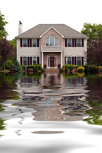 First Response Restoration, Water Damage Minneapolis Specialist image 9