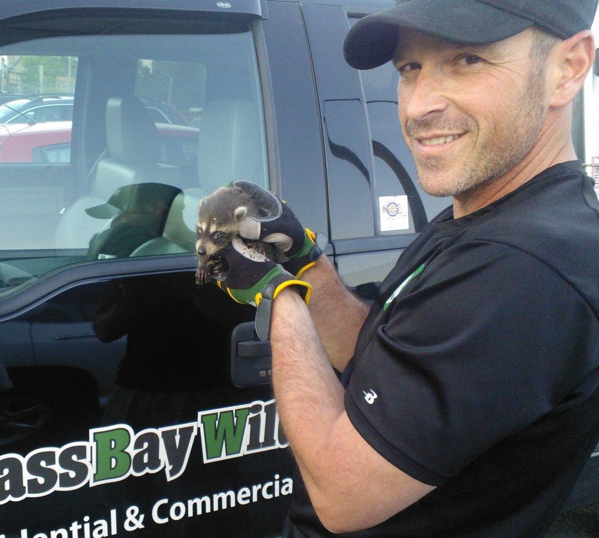 Mass Bay Wildlife Management Inc image 5