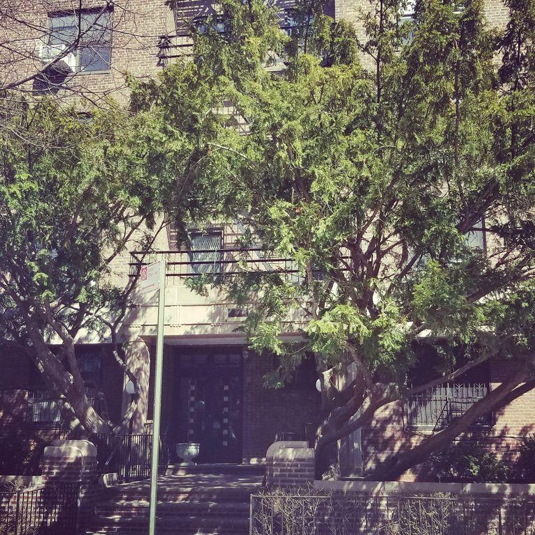 Jodi MacHardy | My Home Realty, LLC. image 3